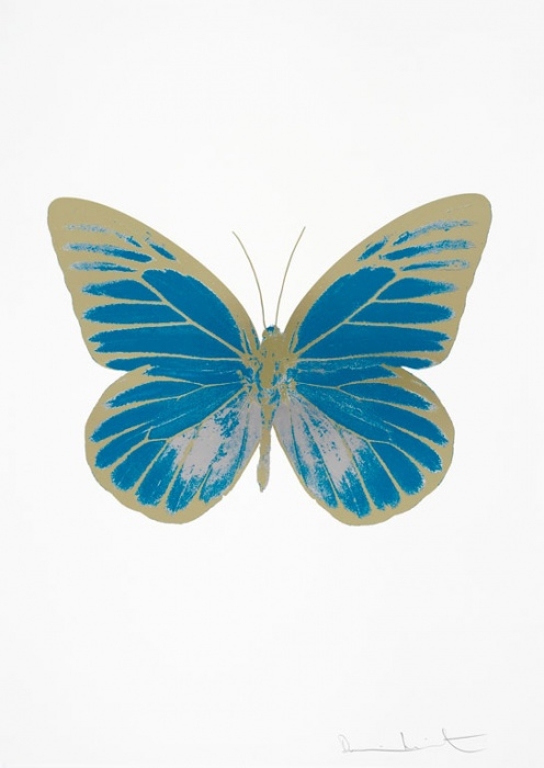 Damien Hirst butterfly prints stolen from the Museo de Arte Contemporaneo