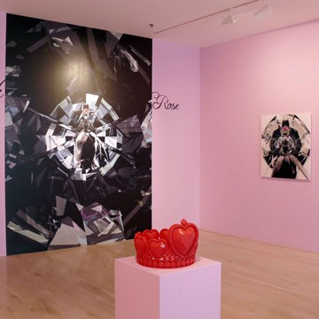 Lucid Dream, Black Rose, Glass Box installation view