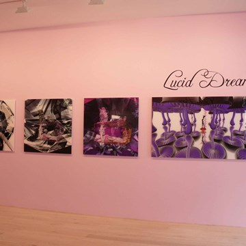 Lucid Dream, Black Rose, Glass Box installation view 2