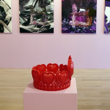 Lucid Dream, Black Rose, Glass Box installation view 4