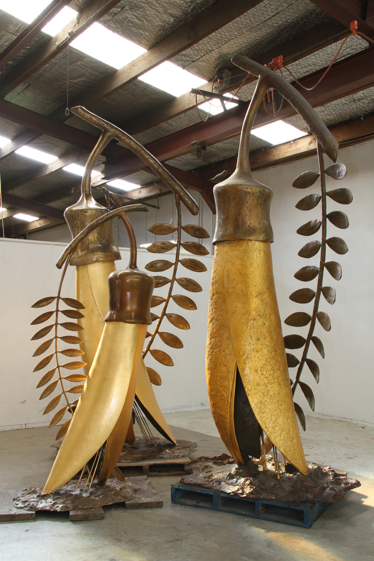 The Gold of the Kowhai Studio Installation