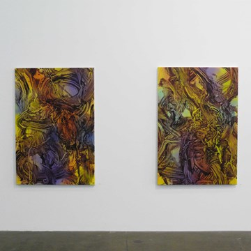 Installation View (1)