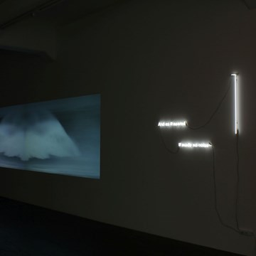 Shadow V - Installation View (3)