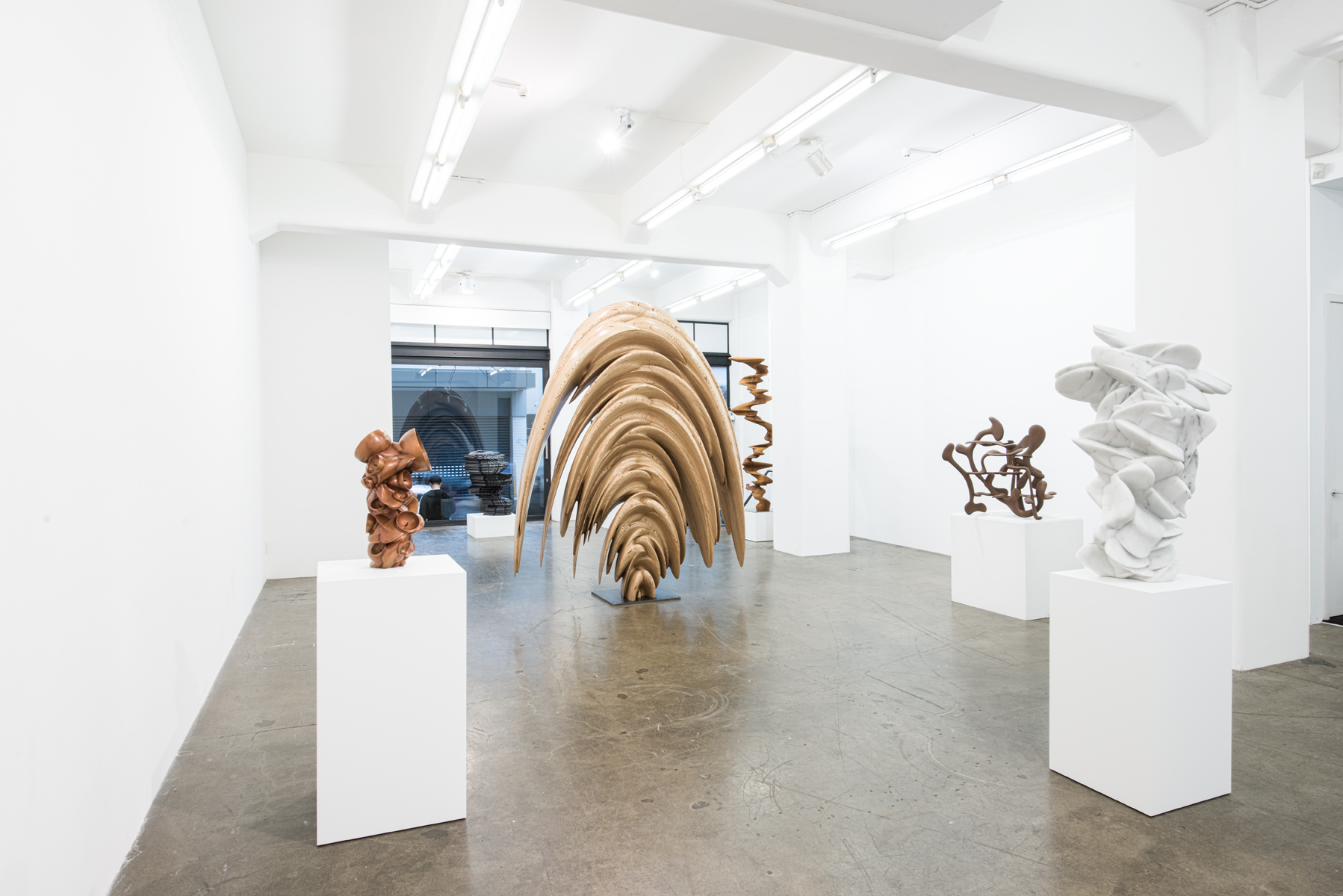 Tony Cragg on Eye Contact