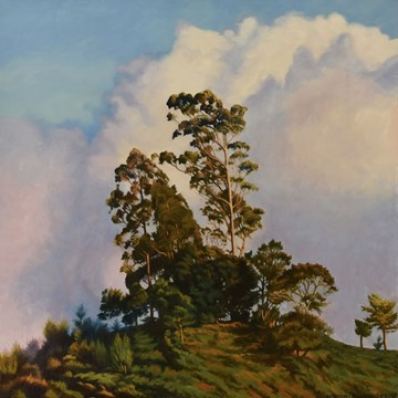 Gum Trees on a Hill