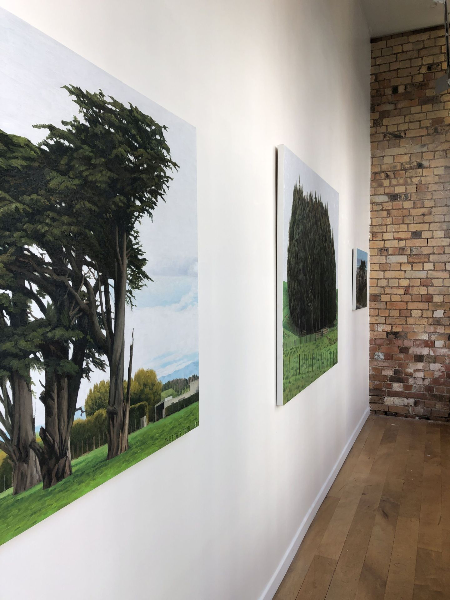 Dick Frizzell Landscapes at Britomart Project Space